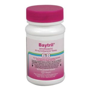 products baytril68mg50