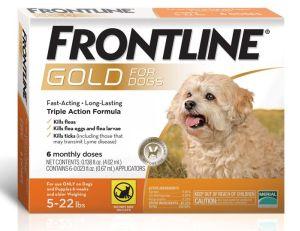 products frontlinegoldorange_2