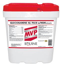 products glucosaminexlplusmsm