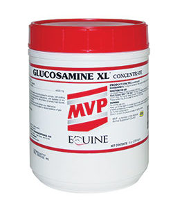 products mvpglucosaminexl