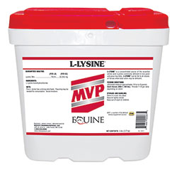 products mvpllysine